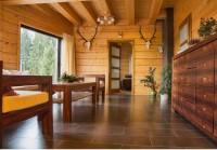 Stavby z dreva na bývanie