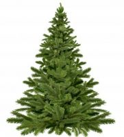 Ekologické Vianoce: stromček živý alebo umelý?